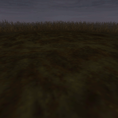A marshland battle background on the world map.