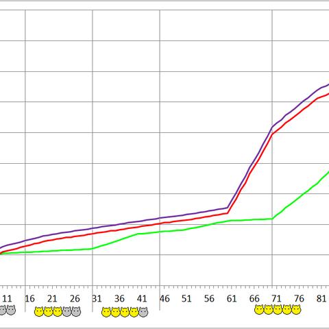 Chelicerata development chart.