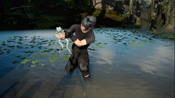 Noctis catches a rainbow frog from FFXV