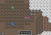 FFMQ Foresta
