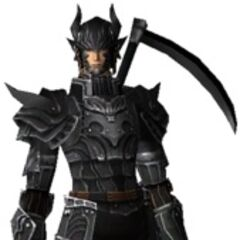 An Elvaan Dark Knight in <i><a href=