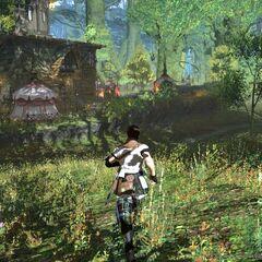 Леса близ Гридании в <i>A Realm Reborn</i>.