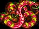PFF Ettin Snake