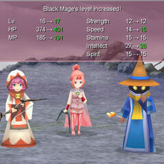 The Black Mage's level up pose (PC).