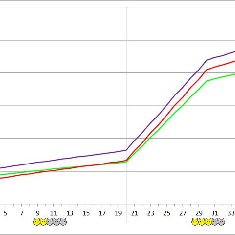 Flanborg development chart.