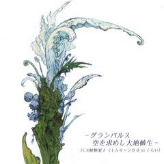 Pulse flora.