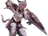 Gladiateur/Final Fantasy XIV