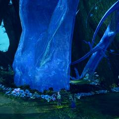 The crystal pillar.