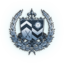 FFXV silver weapon trophy icon