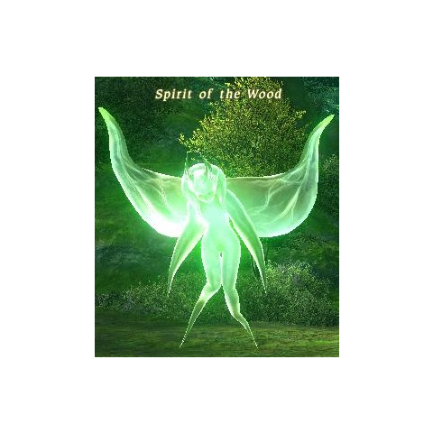 Spirit of the Wood