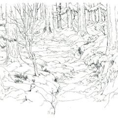 Concept art of the Basics Forest.