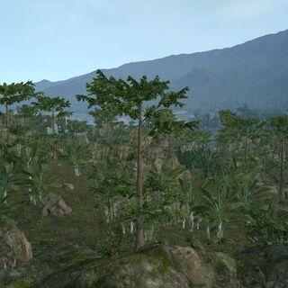 Мангровые леса у Весперпула.