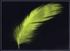 Chartreuse-Chocobo-FFXV