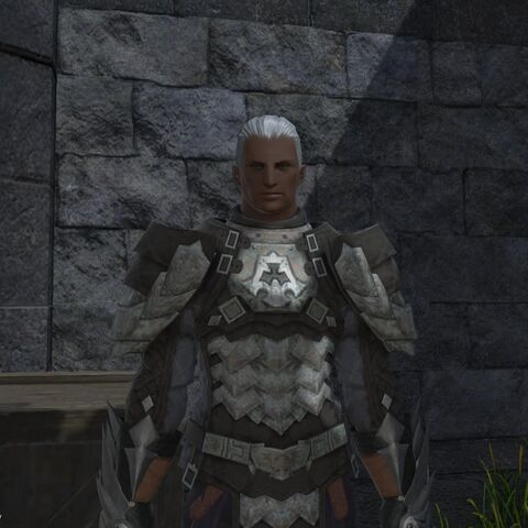 Ilberd as a Brave recruit.