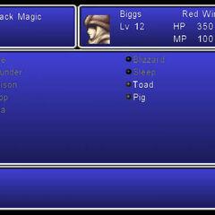 The Magic menu in the Wii version.
