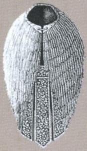FFVI Reed Cloak Artwork