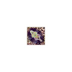 Arcus Chronica (UUR).