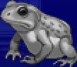 TAY PSP Frog Portrait 6