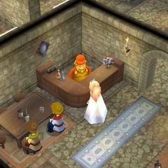 Items shop (DS/iOS).