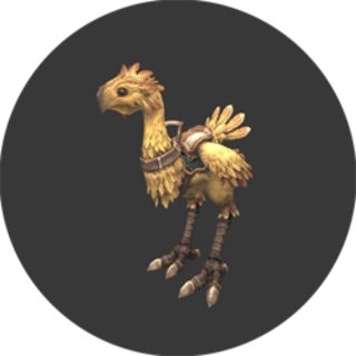 Chocobo Rental<br />(J-6)