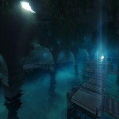 Underground Tunnels.