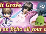 Spirit Grove