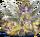 FFII Imperatore 3 PSP