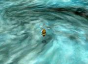 FFIIIDS Surface World - Before Kraken