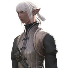 A full female Elezen render.