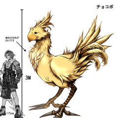 Chocobo Size Comparison.