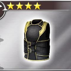 Ballistic Armor.