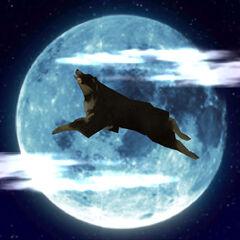 Invincible Moon.
