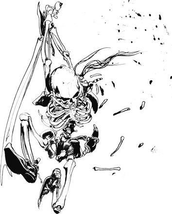 File:Amano skeleton.jpg