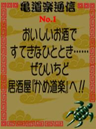 File:Turtles Paradise 1.jpg