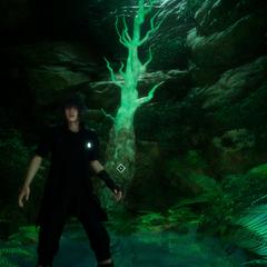 Cave exploration.