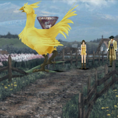 Chocobo crossing in Winhill.