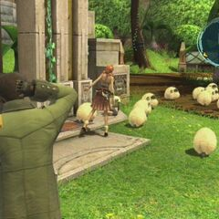 Sheep in Nautilus Park in <i><a href=