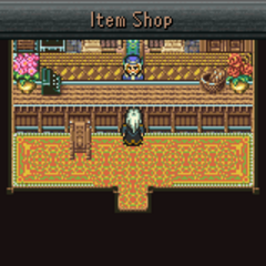 Tzen's item shop (GBA).