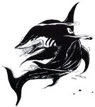 Shark ff1