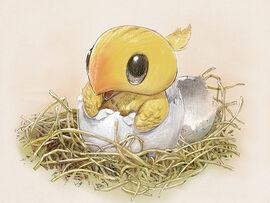 Chocobo Hatchling