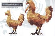 Chocobo concept art