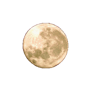 Moon in <i>Final Fantasy IV</i>.