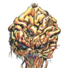 Brain (full-colored).