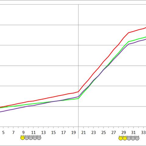 Zwerg Scandroid development chart.