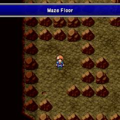 The Maze Floor.