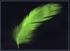 Green-Chocobo-FFXV