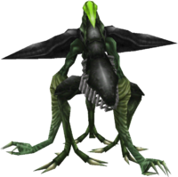 FF8 Propagator Green