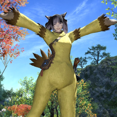 A Miqo'te wearing the Chocobo Suit in <i><a href=