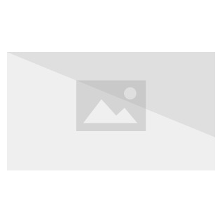 Machinist Soul Crystal.