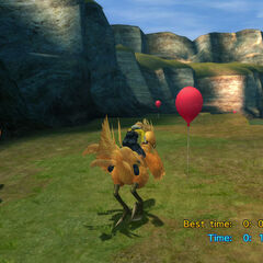 Catcher Chocobo in <i>Final Fantasy X</i>.